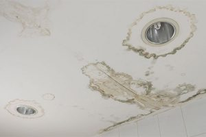 The importance of immediate cleanup after water damage