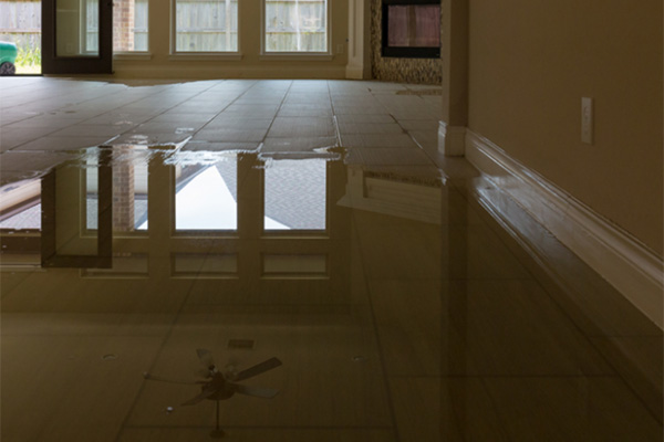 Taking care of water damage in your home