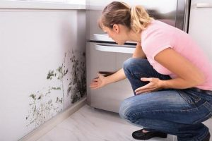 What to do when mildew smell doesn't go away after water damage repair
