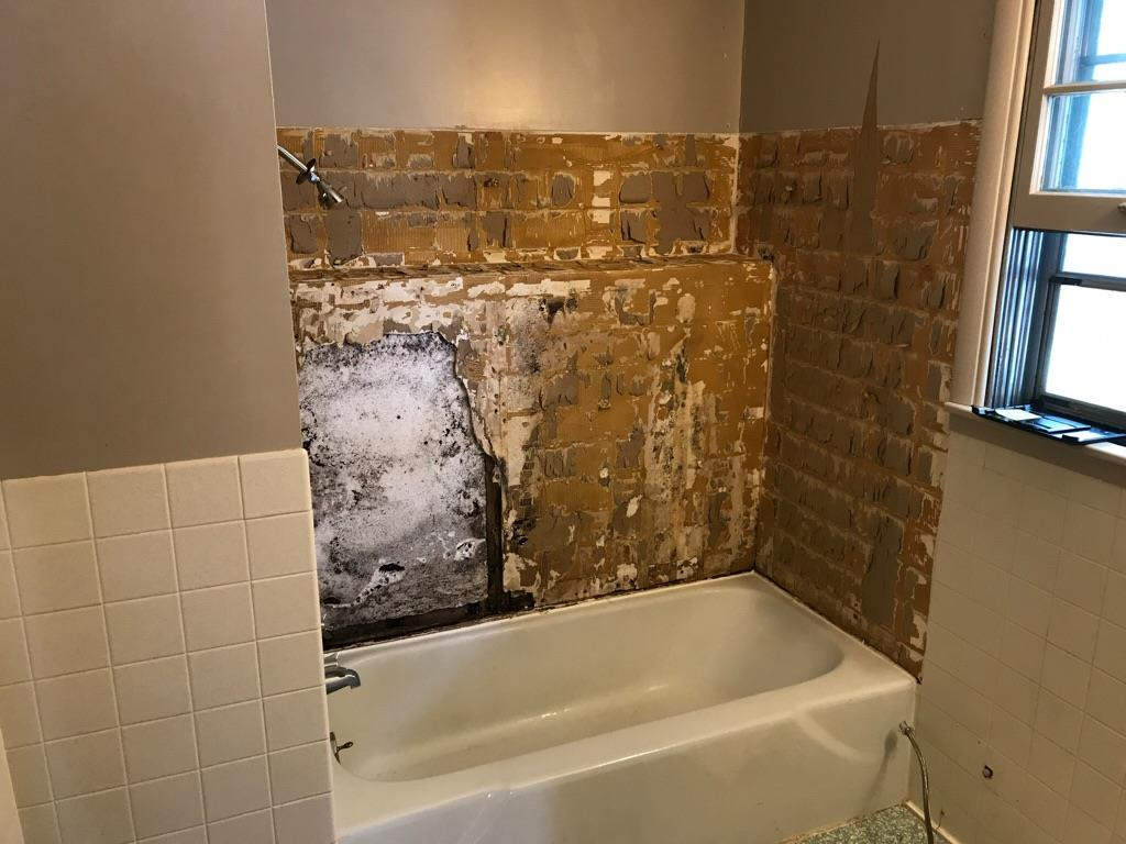 Bathroom – Before