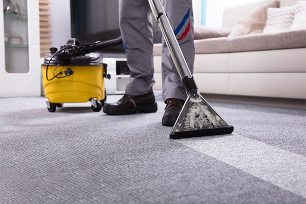 You are currently viewing What to look for when hiring a carpet cleaning company