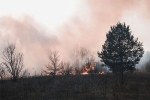 Northern Minnesota at risk for wildfires due to drought